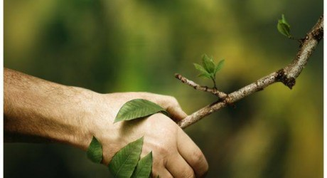 save trees save earth - join us